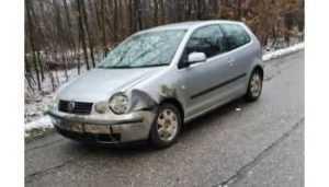 Accident în Pădurea Trivale/Mistreț omorât de o șoferiță 5