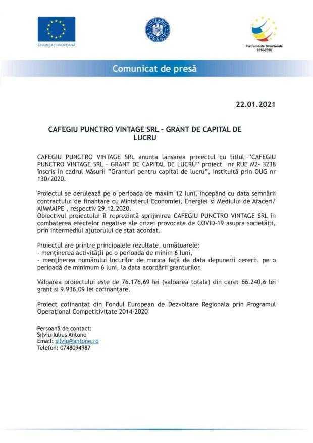CAFEGIU PUNCTRO VINTAGE SRL – GRANT DE CAPITAL DE LUCRU 4