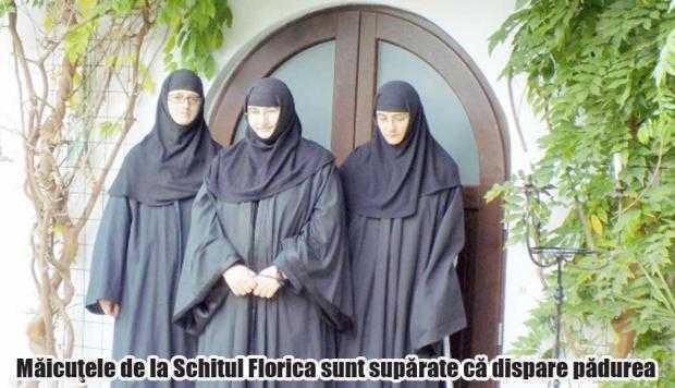 Arhiepiscopia revendică terenurile din jurul Bisericii Florica 6