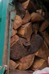 Lemne transportate cu mașina de gunoi, în Argeș. Amendă de 5000 de lei 8