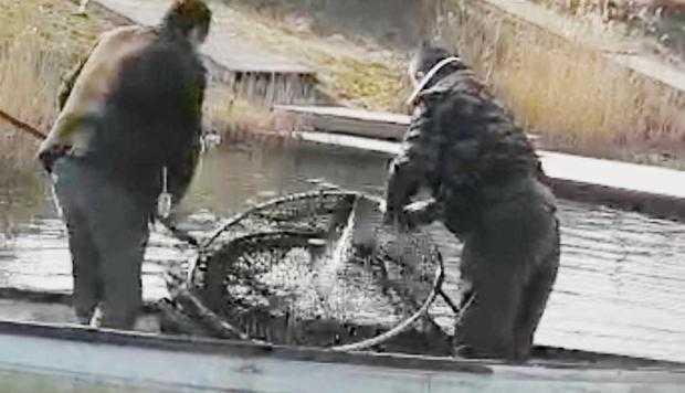 Angajaţii AJVPS Argeş au găsit zeci de plase de braconaj şi au eliberat peştii 6
