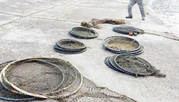 Angajaţii AJVPS Argeş au găsit zeci de plase de braconaj şi au eliberat peştii 7