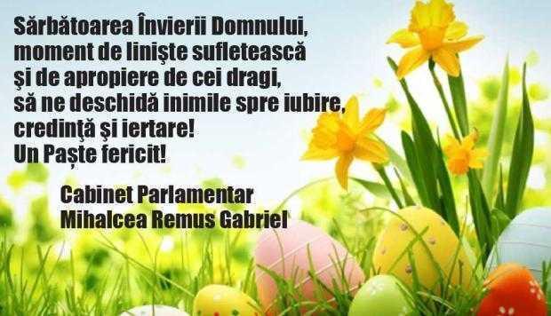 Felicitare Mihalcea Remus Gabriel, deputat PSD Argeș 4