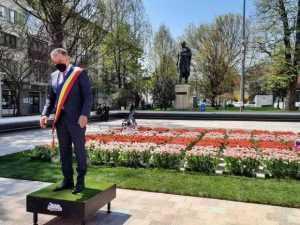 """Un nou soi de lalea a primit numele orașului Pitești. """"Este singura lalea botezată în afara granițelor Olandei"""" 7"""