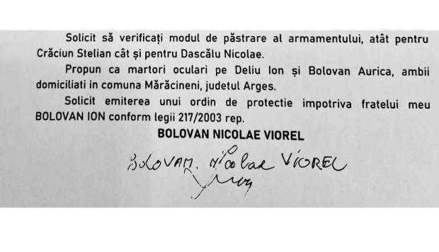 Înainte să moară, denunţătorul Viorel Bolovan ceruse ordin de protecţie împotriva fratelui său 6