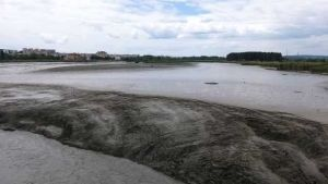 Mii de tone de mâl după golirea barajului din Tudor Vladimirescu 7